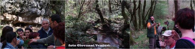 bosco e geologia